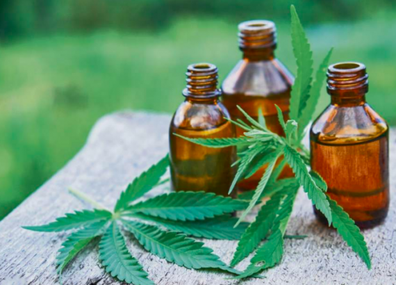 Cannabis Oil in Practice