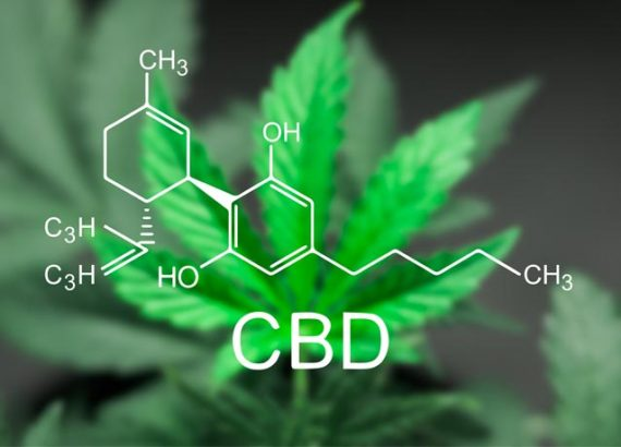 CBD: How to Choose Products in a Confused Market?